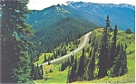 Hurricane Ridge Road Olympic National Park Washington Postcard p5828
