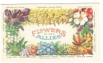 Click here to enlarge image and see more about item p5877: Flowers of The Allies WWI Postcard