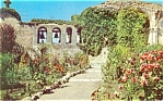 Click here to enlarge image and see more about item p5962: Mission San Juan Capistrano CA Postcard p5962
