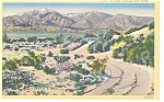 Click here to enlarge image and see more about item p6477: A Road Through The Desert Postcard p6477