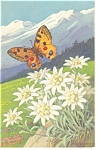Click here to enlarge image and see more about item p6538: Butterflies and Mountains Postcard