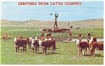 Click here to enlarge image and see more about item p6575: Cattle on Ranch with Windmill Postcard