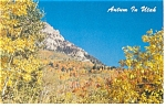 Pole Canyon Provo UT in Autum  Postcard p6683