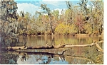 Click here to enlarge image and see more about item p6740: Dublin, GA Troup Spring Lake Postcard