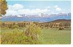 Click here to enlarge image and see more about item p6787: Crazy Mountains, MT   Postcard