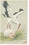 Click here to enlarge image and see more about item p6833: Stork Over Baby in Egg Undivided Back Postcard 1906