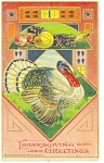 Thanksgiving Greetings with Tom Turkey  Postcard  1916