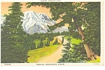 Click here to enlarge image and see more about item p6900: Rainier National Park Highway Scene Postcard