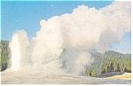 Old Faithful Geyser Yellowstone Park Postcard p7166