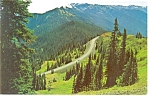 Click here to enlarge image and see more about item p7421: Olympic National Park,WA, Hurricane Ridge Road Postcard