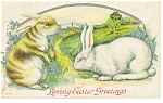 Click here to enlarge image and see more about item p7463: Easter Postcard Two Easter Bunnies ca 1910 p7463
