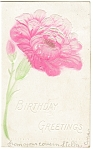 Click here to enlarge image and see more about item p7500: Embossed Flower Birthday Postcard Undivided Back