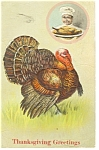 Click here to enlarge image and see more about item p7599: Tom Turkey Thanksgiving Postcard 1907 Divided Back