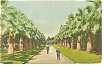 Eastlake Park, Los Angeles, CA  Postcard