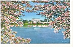 Washington, DC, The Lincoln Memorial Postcard