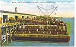 Click here to enlarge image and see more about item p7686: New Orleans, LA  Barge load of  Cotton