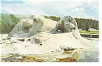 Grotto Geyser Yellowstone National Park WY Postcard p7804