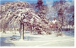 Click here to enlarge image and see more about item p7997: Halifax Nova Scotia Canada Winter Scene Postcard p7997