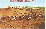 Huge Kansas Feed Lot Postcard