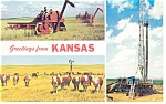 Kansas,Farming,Cattle, Oil Views Postcard
