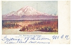 Mt Rainier WA from Lake Washington Postcard 1906