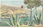 Click here to enlarge image and see more about item p8325: Avalon Bay Catalina Island CA Ship Casino Postcard p8325