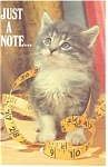 Click here to enlarge image and see more about item p8477: Cute Tabby Cat Postcard Just a Little Note Postcard p8477
