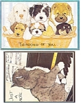 Click here to enlarge image and see more about item p8584: Set of Four Animal  Postcards p8584
