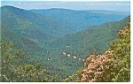 US 441 in Great Smoky Mountains Postcard