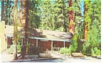 Click here to enlarge image and see more about item p8737: Yosemite National Park CA Big Tree Lodge Postcard p8737