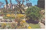 Flower Gardens, Santa Monica, CA,  Postcard
