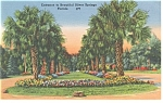 Silver Springs FL Entrance Linen Postcard p9007