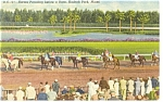 Click here to enlarge image and see more about item p9060: Miami  FL, Hialeah Park Post Parade Linen Postcard