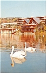 Mt Snow, VT, Snow Lake Lodge Postcard