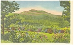 Green Mountains VT  Camel s Hump Postcard p9787 1943