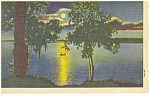 Moonglow on a Lake with a Rowboat Postcard p9833 1956