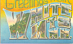Greetings From White Mtns NH Big letter Postcard PP22201