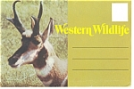 Click here to enlarge image and see more about item sf0125: Western Wildlife Souvenir Folder
