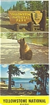 Yellowstone National Park WY Postcards Glory Pool sf0130
