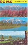Click here to enlarge image and see more about item sf0133: Grand Teton  National Park WY Postcards sf0133
