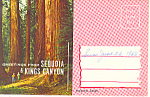 Click here to enlarge image and see more about item sf0291: Sequoia Kings Canyon Park CA Souvenir Folder sf0291