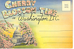 Cherry Blossom Time Washington DC Souvenir Folder