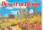 Click here to enlarge image and see more about item sf0391: Desert in Bloom Arizona Souvenir Folder  sf0391