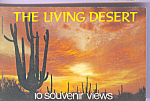 Click here to enlarge image and see more about item sf0404: The Living Desert  Souvenir Folder sf0404