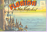 Florida The Winter Vacationland Souvenir Folder  sf0429