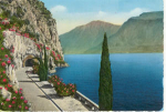 Click here to enlarge image and see more about item v0138: Lake Garda Italy  Postcard
