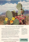 Sinclair Oil Big Bend National Park  Ad