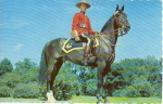 Click here to enlarge image and see more about item w0690: Royal Canadian Mounted Police Postcard w0690