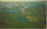 Click here to enlarge image and see more about item w0711: Rideau Lakes  Ontario Postcard