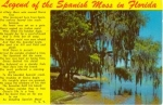 Click here to enlarge image and see more about item w0769: The Legend of the Spanish Moss Postcard